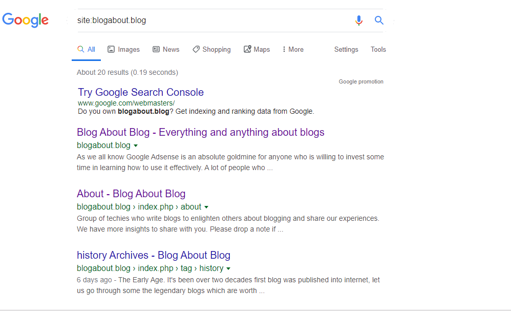 How to Test Googles Search Index